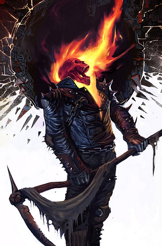 The Rogues Gallery Ghost Rider Nerdeux